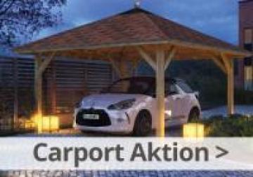 Karibu Carport Gratis H-Anker Aktion