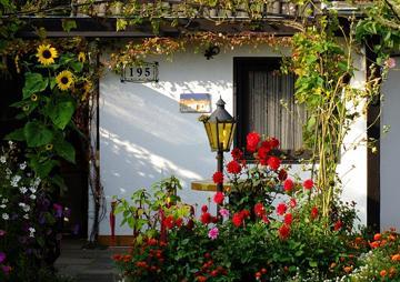 Gartenhaus Frühjahrs-Check