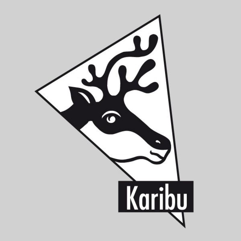 Karibu Holz-Gartenhaus Grauburg 6 - 19 mm gerades Stufendach Schraub- Stecksystem - terragrau